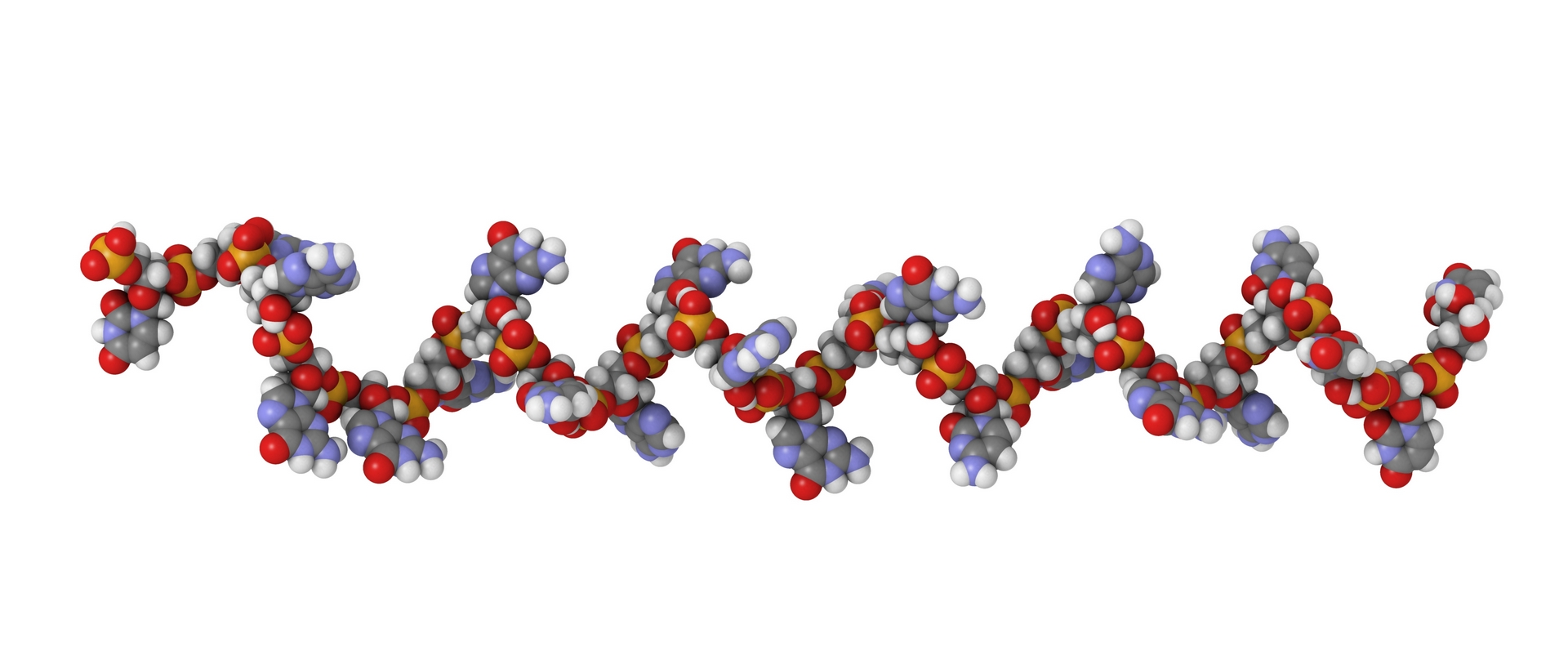 Quality Assistance Oligonucleotides analytical services