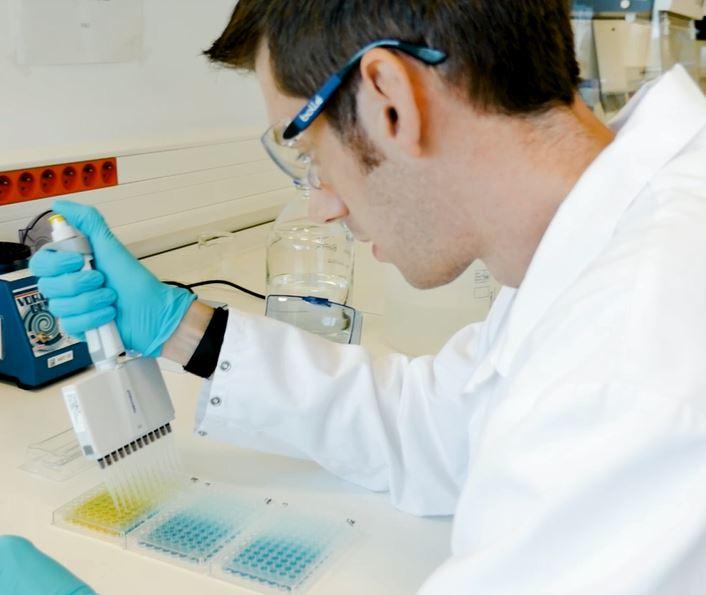 Quality Assistance job technician laboratory cell culture