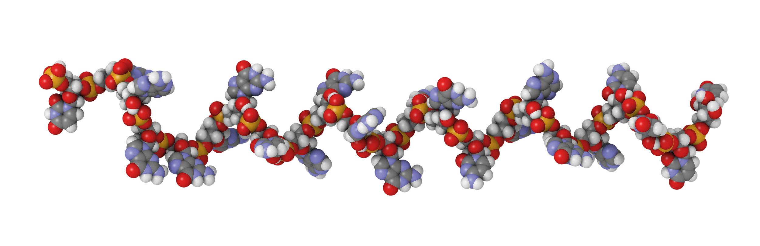 Quality Assistance JPBA Elsevier Oligonucleotides